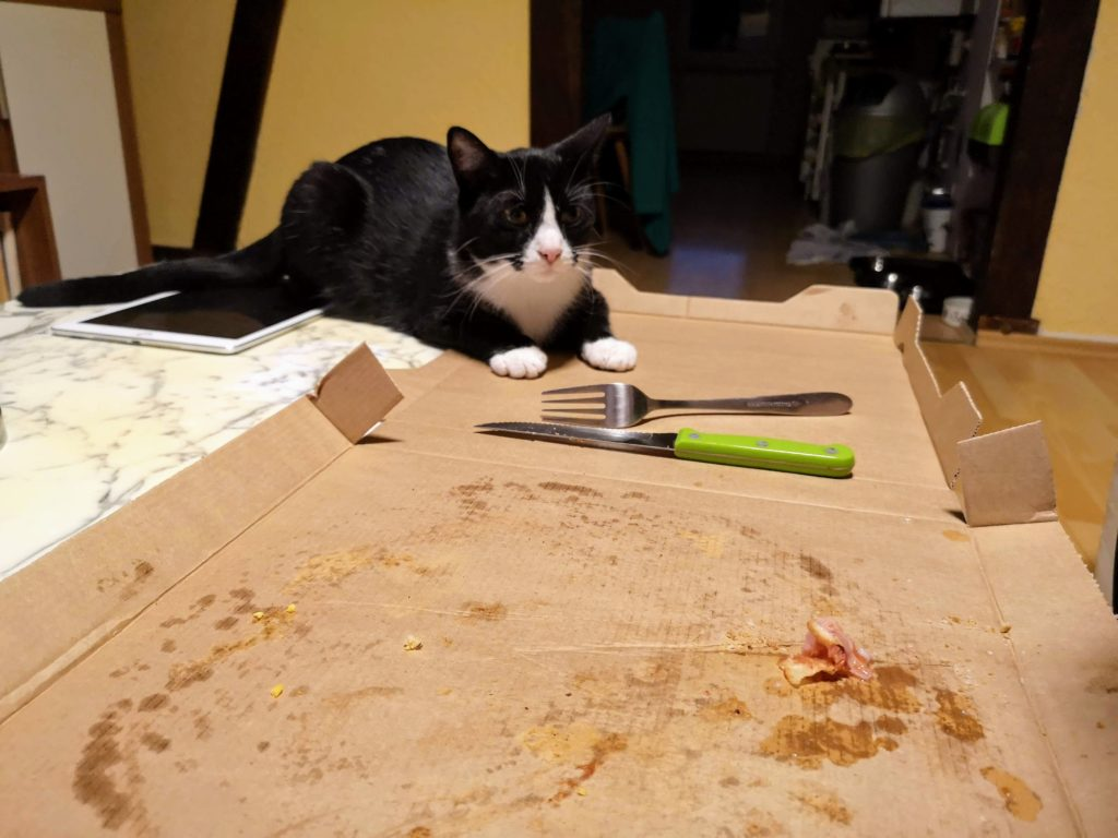 Abby wollte immer was vom Essen abhaben